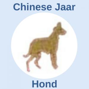 Chinese jaar hond