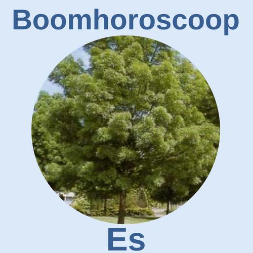boomhoroscoop es